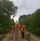 Po trzech latach linia kolejowa z Koronowa do Tucholi będzie przejezdna